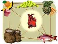 رژیم غذایی كشورهای حاشیه مدیترانه خطر سكته و سرطان را كاهش می دهد
