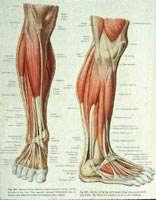 گرفتگی عضلات پا در خواب شب
