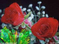 مولد الزهراء عليها السلام للإيمان عيد