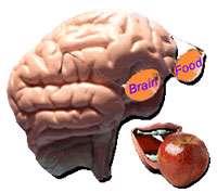 غذاهای تقویت كننده حافظه (1)
