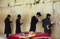 اليهود والتحالف مع الأقوى