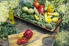 مواد غذایی مفید برای تقویت چشم و بینایی (2)