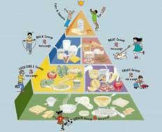 هرم غذایی مخصوص کودکان 6-2 ساله
