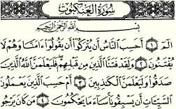 تفسیری جدید از مثال عنكبوت در قرآن