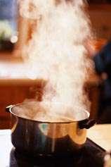 تاثیر انواع روش های پخت بر روی خاصیت مواد غذایی (2)