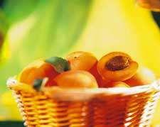 زردآلو؛ طلای تابستان