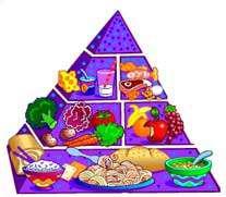 تغذیه کودکان دبستانی (2)
