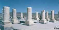 شیوه های معماری دوره ی هخامنشیان
