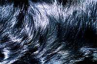 برای داشتن موهایی زیبا چه كاری انجام دهیم؟