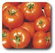 چه نكاتی را در خرید و نگهداری سبزیجات رعایت كنیم؟