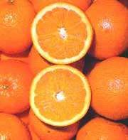 دسر پرتقال