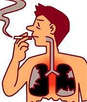 تاثیر سیگار بر ریه ها و سایر اندام های بدن