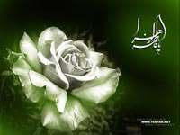زواج فاطمة الزهراء ( عليها السلام ) من أمير المؤمنين ( عليه السلام )