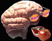 تاثیر تغذیه بر ضریب هوشی (IQ)