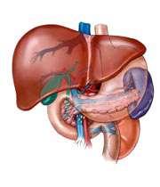 علایم و تشخیص بیماری هپاتیت B