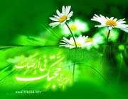 تتويج الإمام المهدي ( عليه السلام )