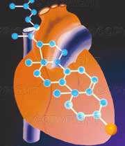 توصیه های غذایی برای کاهش کلسترول خون بالا