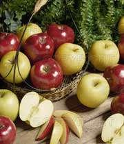 خواص معجزه آسای سیب (1)