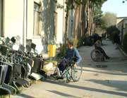 اجرای قانون جامع حمایت از معلولان امکان پذیر نیست