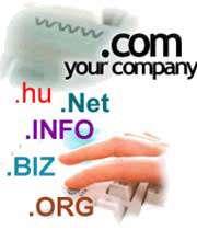 نام دامنه اینترنتی شما