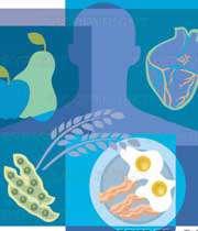 تاثیر مواد حاوی کلسترول بر قلب