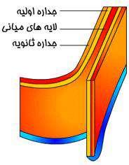 دیواره سلولی