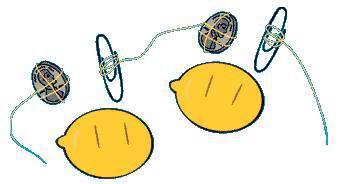 باتری میوه ای