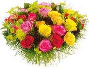 تصویری از چندین گل
