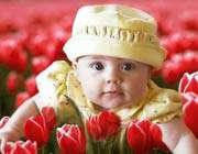 تصویر یک بچه که در میان گلها است
