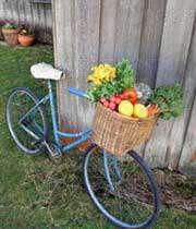 دوچرخه ای با سبزیجات