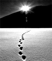 آن سوی خطّ زندگی
