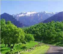 کوه های استان کهگیلویه وبویراحمد