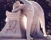 همیشه فرشته نباشید!