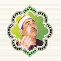 زندگینامه استاد محمد محمود طبلاوى