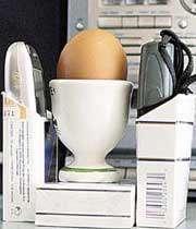 آزمایش تاثیر امواج موبایل بر تخم مرغ