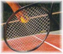 Tennis: Jelena Jankovic, troisième au classement WTA