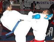 کاراته ایران