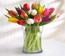 несколько полезных советов для подаренных цветов