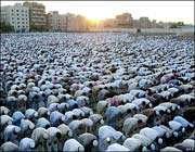 آداب نماز عید فطر