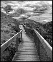 پلی از زندان به قصر (1)