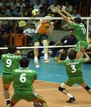 молодежная волейбольная команда