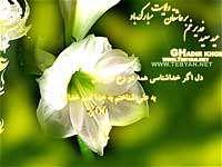 عيد غدير خم ، يا علي ، گل