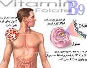 نقش اسید فولیک در بدن