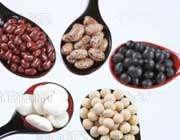 6 غذای مورد نیاز هر خانم(2)