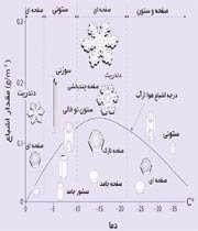 نمودار مورفولوژی