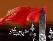 در امتداد قبر شهیدان کربلا