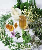 درمان سرخجه با روش گیاه درمانی