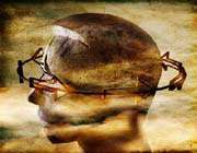 مخ الرجل