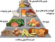 هرم غذایی در دوران بارداری