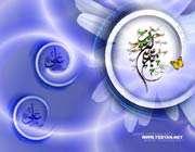 حضرت علی علیه السلام؛ مدهوش در عبادت